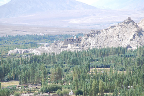 Shey Palace, view from Thiksey