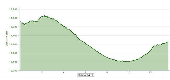 Ladakh Half Marathon Profile