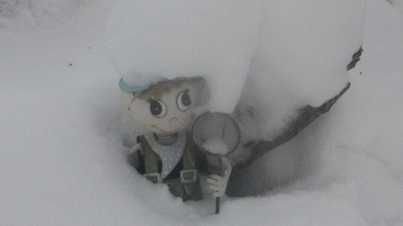 Der Wintertroll in Schweden