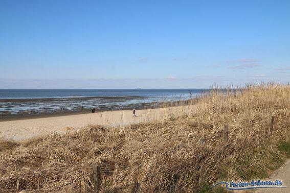 Düne, Strand und Wattenmeer in Cuxhaven Duhnen