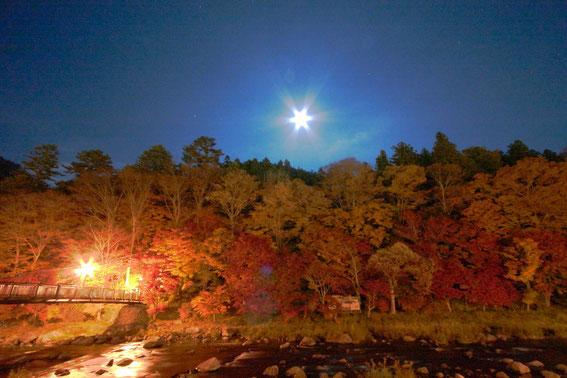 深夜に月明かりで撮影