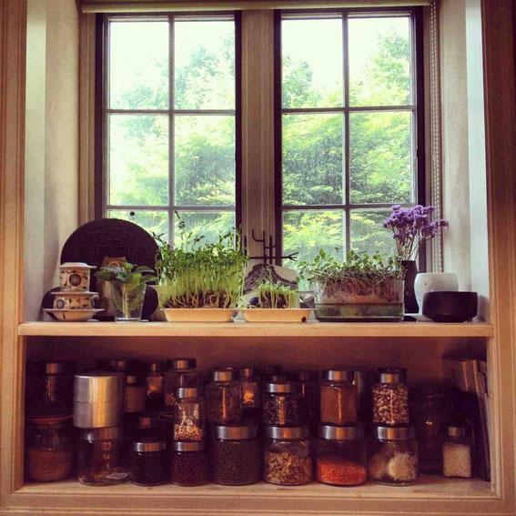 食糧基地!と呼んでいる乾物ストックコーナー。上はいろいろなスプラウトの種を発芽させたもの。種でストックしておけば、新鮮な緑も数日で食べることができる