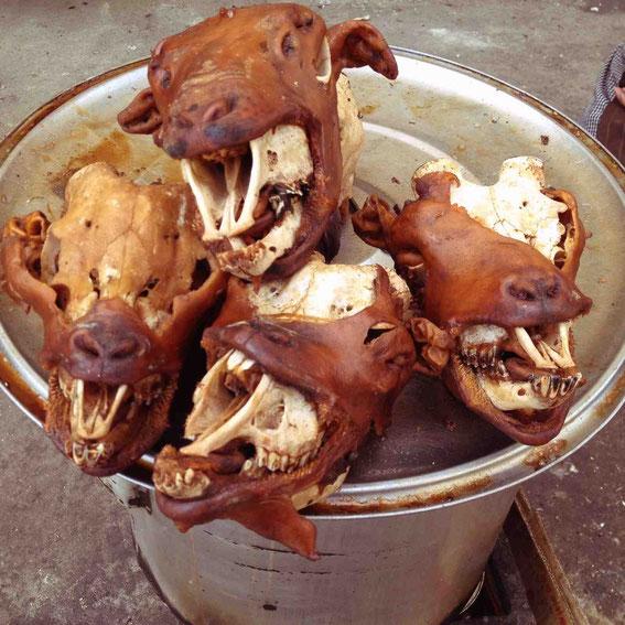 お腹いっぱいで食べなかったが、回教街で見かけた羊の頭