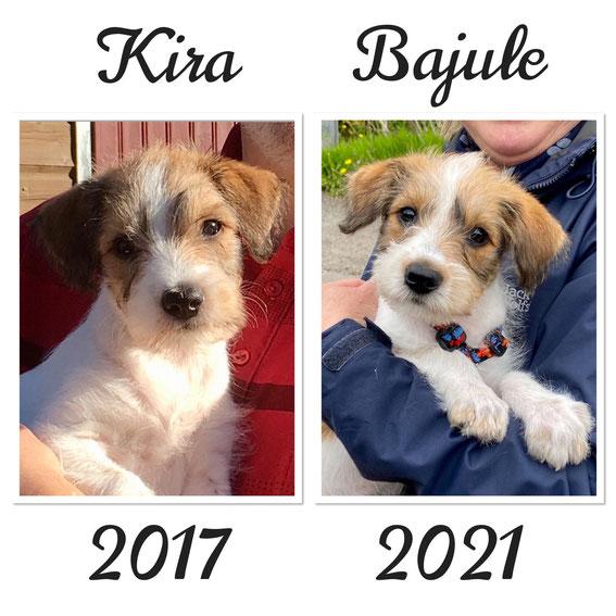 ab sofort sind sie ein Team - Kira und Tochter Bajule