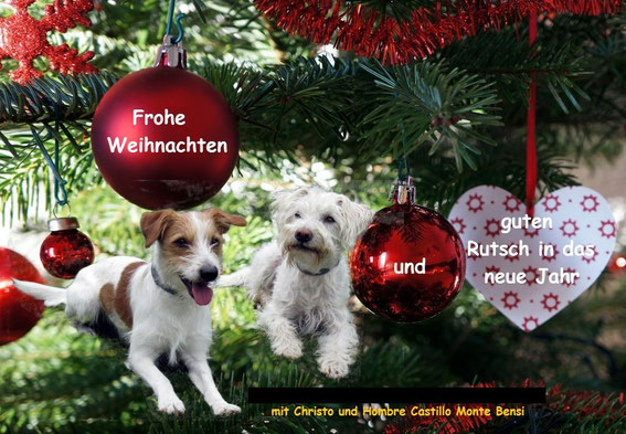 Hombre und Christo wünschen frohe Weihnachten