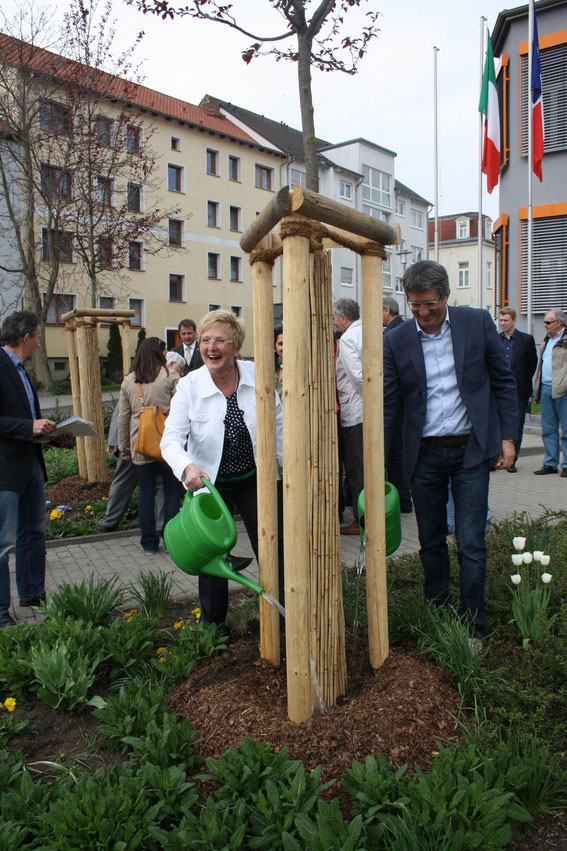 Als Symbol der Freundschaft pflanzte Bürgermeisterin und Delegationsleiterin Monika Budke gemeinsam mit den anderen Partnerschaftsvertretern Bäume vor dem Hauptgebäude der Merseburger Stadtverwaltung.
