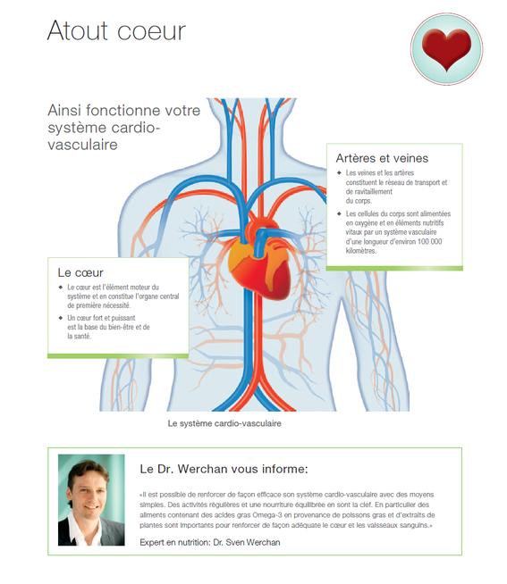 Votre système cardiovasculaire peut etre aidé avec l'aloe vera