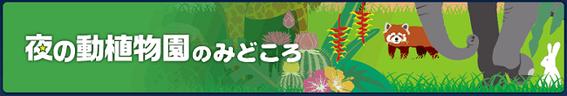 福岡市動物園チラシ2