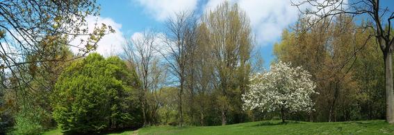 Un des paysages typiques de la Plaine, accès 3 du Campus de la Plaine ULB, Printemps 2013