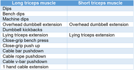 overview triceps exercises dips overhead extension dumbbell cable rope bar pushdown