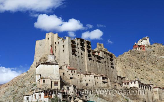 Leh Palace, Namgyal Tsemo Gompa, Leh, Ladakh