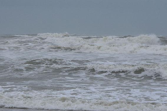 Plage de Canet, le 14 février, par vent marin