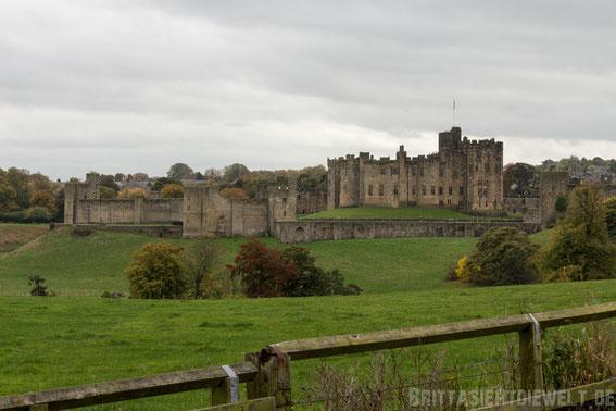 Alnwick,castle,Schottland,Tipps,Hary,potter,down,town,abbey