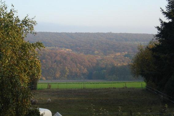 Blick vom Küchenfenster zum Gauchsberg