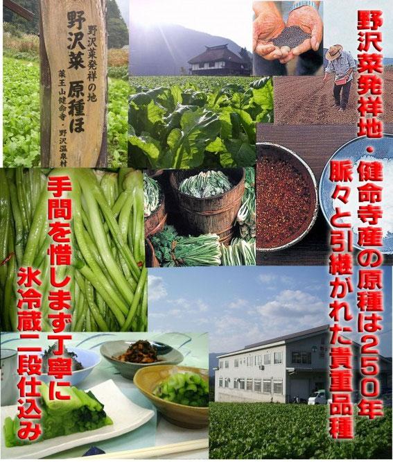 とみき漬物野沢菜農園(10月31日撮影)