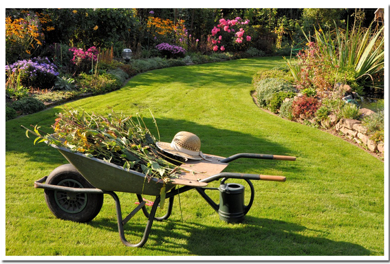 gartenpflege tim sievers garten landschaftsbau region l neburg l neburger heide. Black Bedroom Furniture Sets. Home Design Ideas