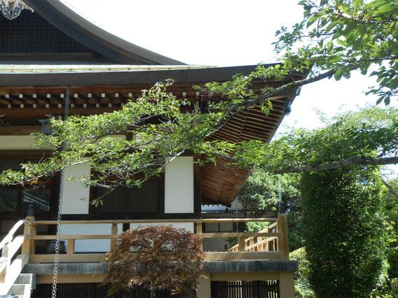 本堂の右手、迦葉堂・・・優雅な屋根が印象的です