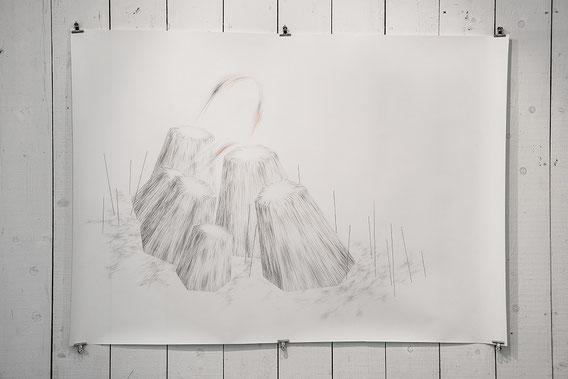 Restons groupés 2, 190x150 cm, Mine de plomb et crayons de couleur, 2013