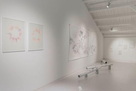 Vue d'exposition, 2016