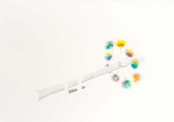 Sans Titre, 70x100 cm, Mine de plomb et crayons de couleur, 2012