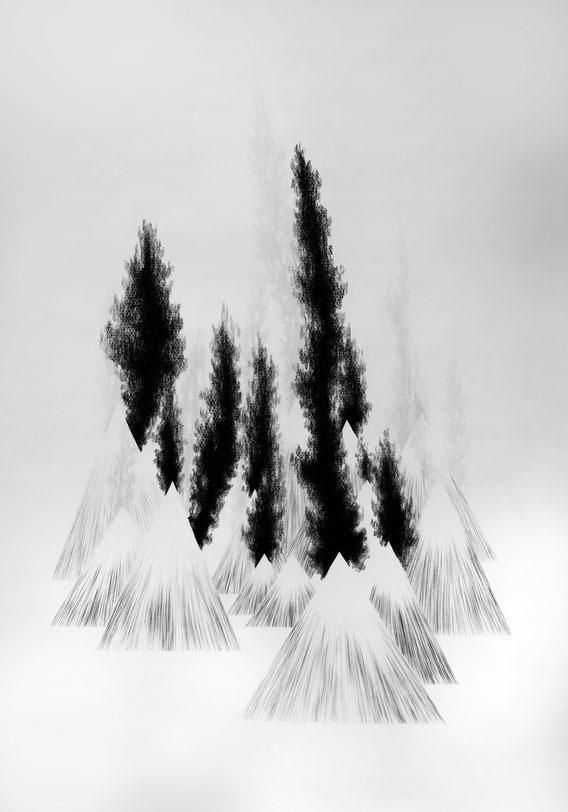Sans Titre, Mine de plomb et fusain sur papier, 150x180 cm, 2019