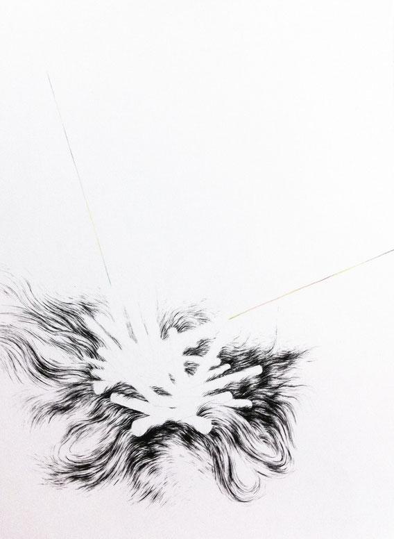 Take me home 2, 30x40 cm, encre et et crayon de couleur, 2013