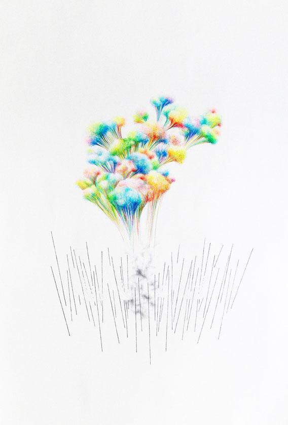 Sans Titre, 70x100 cm, Mine de plomb et crayons de couleur, 2011