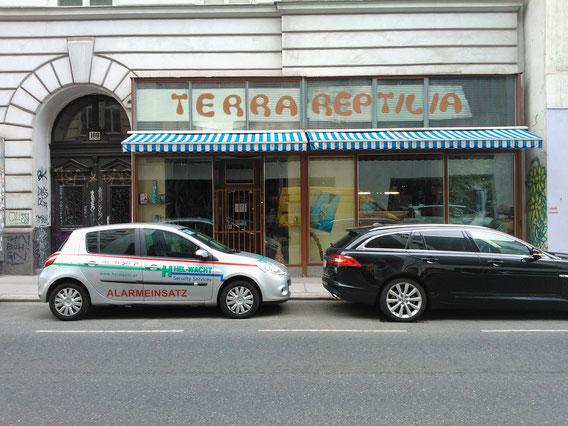 Terra Reptilia Shop, Vienna 1070, Burggasse 100.Photos: Hanna Schimek