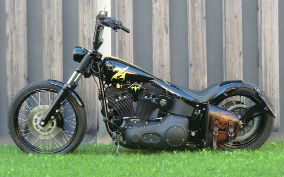 Harley 74 Harley Davidson Evo