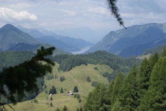Im Tal liegt der Weißensee, im Vordergrund die Gasser Alm