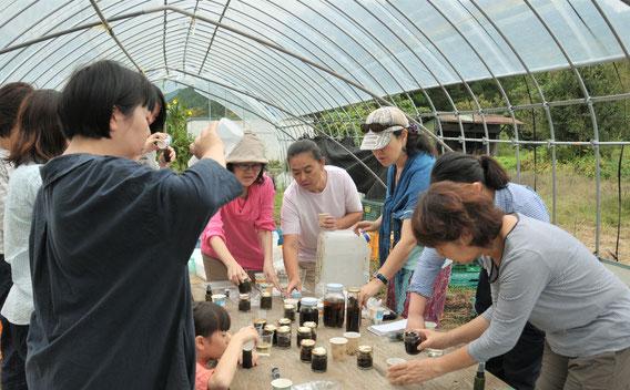 メディカルハーブ 自然栽培 ハーブ教室