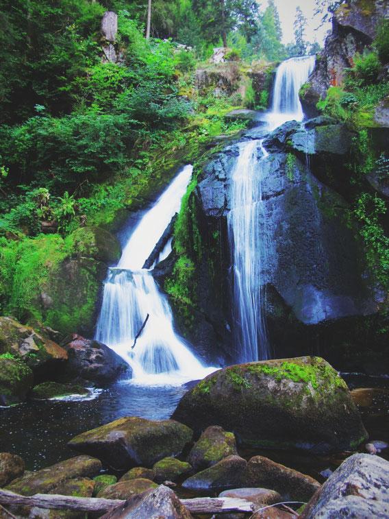 bigousteppes allemagne triberg cascades forêt