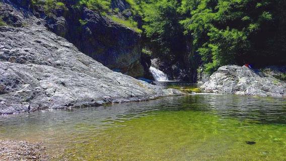Rivière en Ardèche Verte