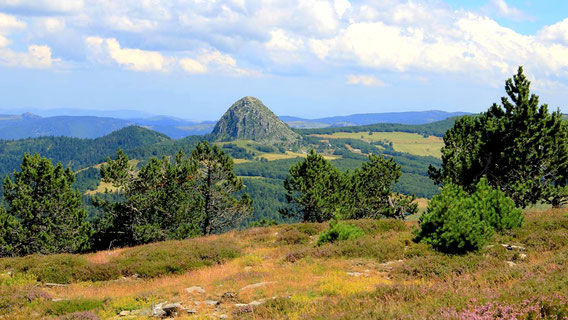 Le Mont Gerbier-de-Jonc en Ardèche