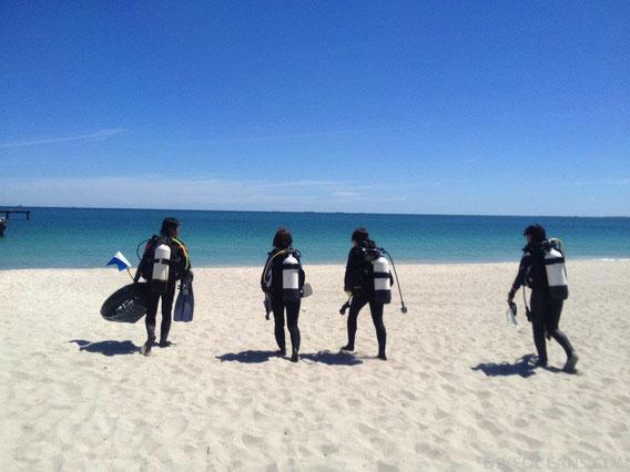 PADI Diving Course for Beginner