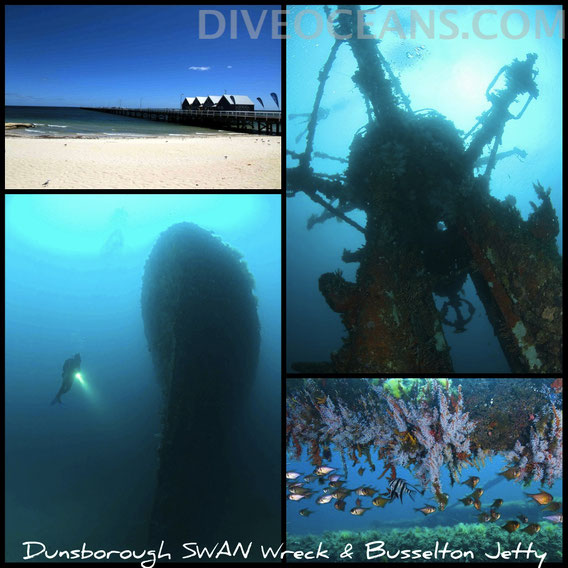Busselton and Dunsborough Tour