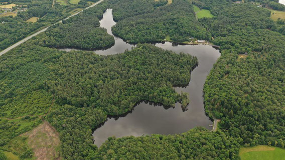 étang de Ruffaud