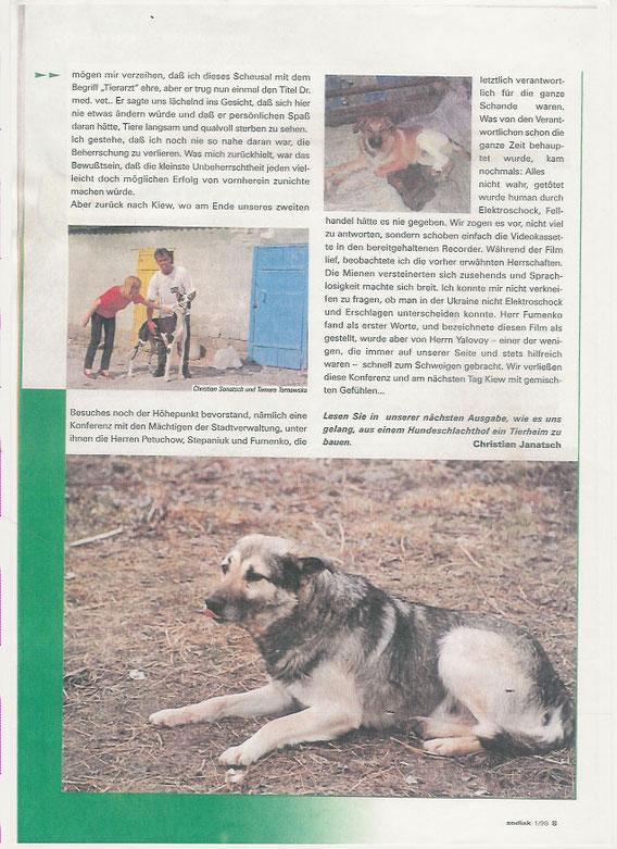 Ein Hundeleben in Kiew (Teil 3)