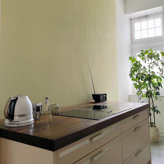 Grüne Wandfarbe und eine hohe Pflanze aktivieren die Energie in ENE.
