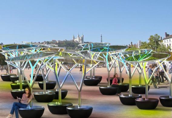 L'arbre de lumière de Sylvie Maréchal