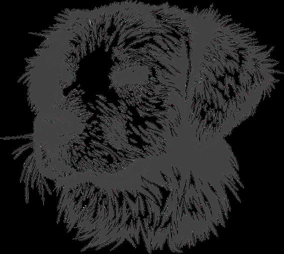 [Bild: www.pixabay.com]