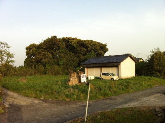現在は、素敵なスタジオも改装前はシャッター付きの小屋でした