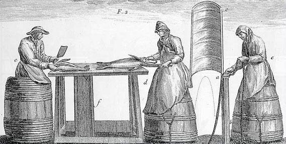 Pêcheurs dans leur baquets gravure du XVIII ème siècle Duhamel de Monceau