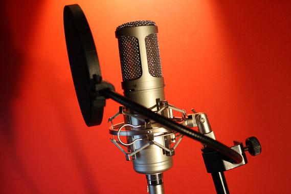 DeisterStudio Mikrofon