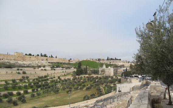 Кидронская долина и Храмовая Гора слева