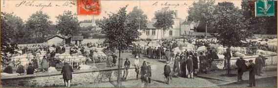 ancienne carte postale du champ de foire St-Christophe-en-Brionnais au début du XXe siècle