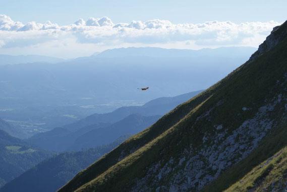 Ein Vogel hält sich im kräftigen Südwind, Blick nach Slowenien