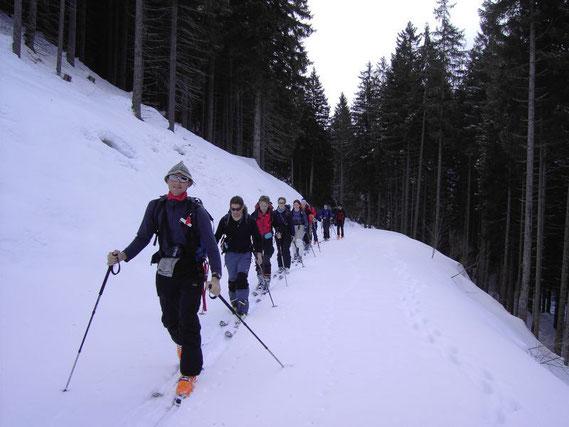 Aufstieg am Forstweg