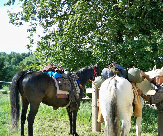 barre attaches chevaux