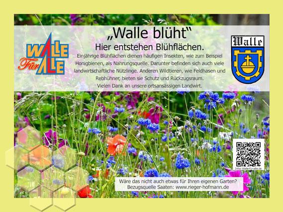 Walle Blüht auf/ Blühflächen für Insekten und Wildtiere finden sie durch unsere Schilder im Ort